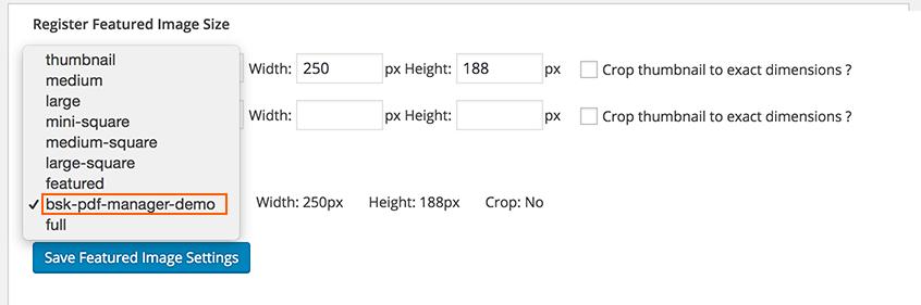 bsk-pdf-manager-register-image-size-custom-2
